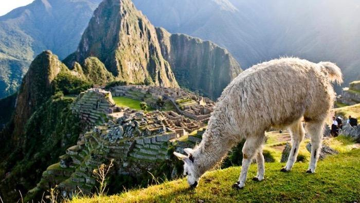 Peru Travel Destination - Machu Picchu