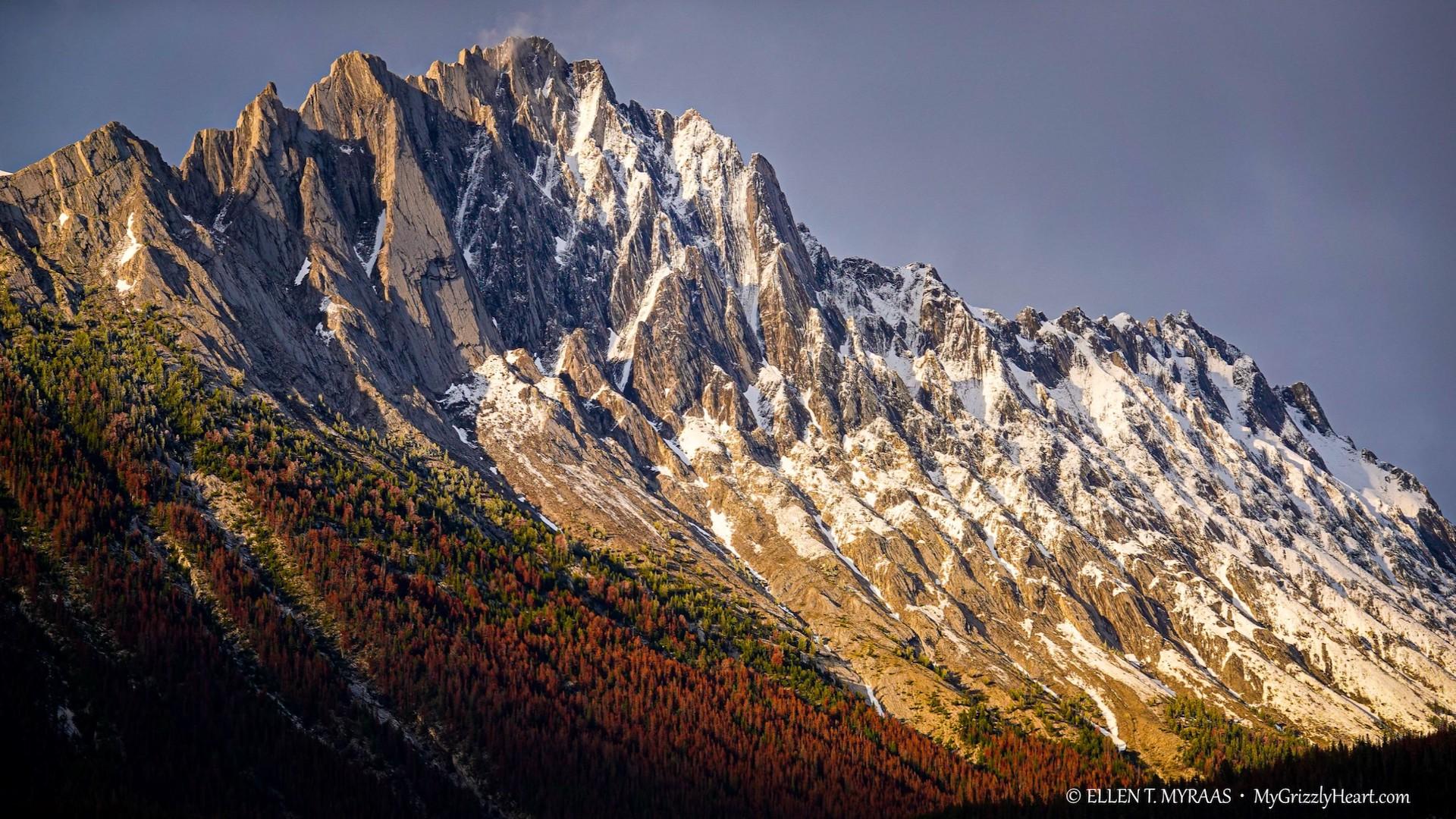 Canadian Rocky Mountains - Jasper Peaks - Mount CR2 in The Colin Range
