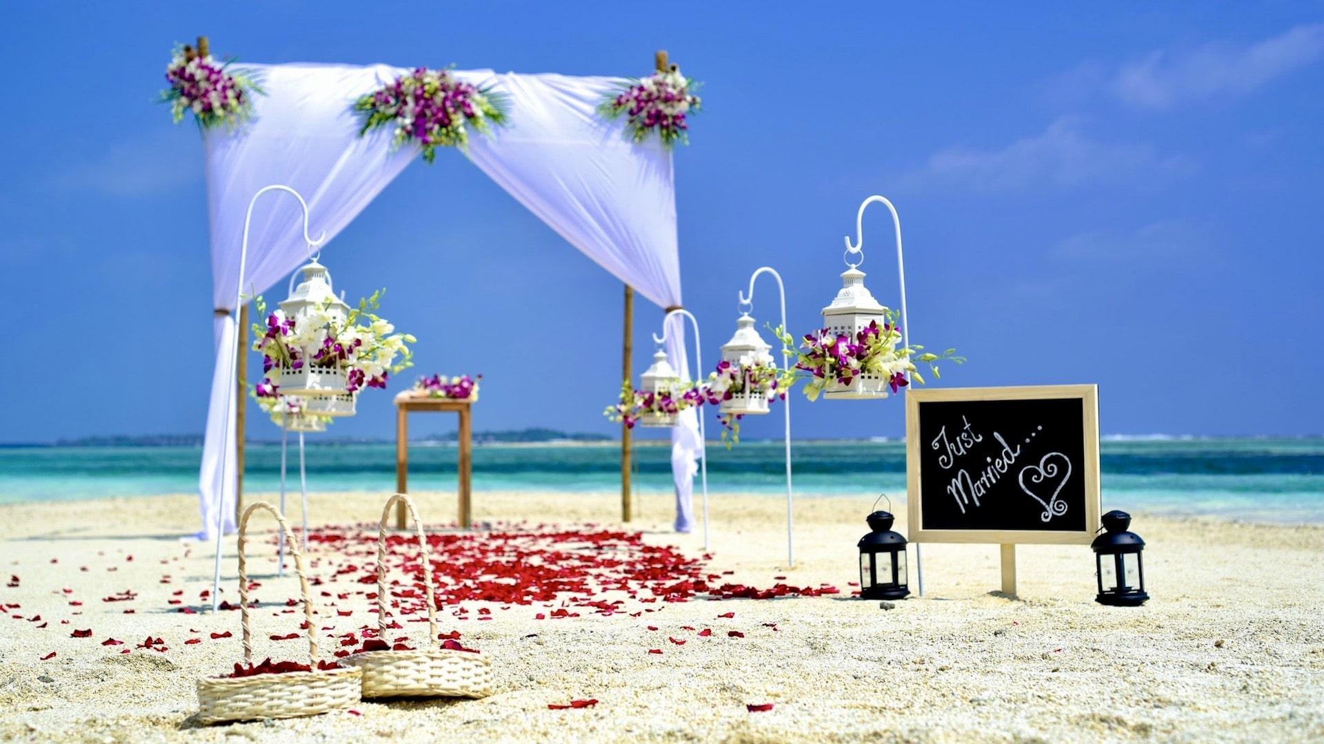 Beach Wedding - Just Married